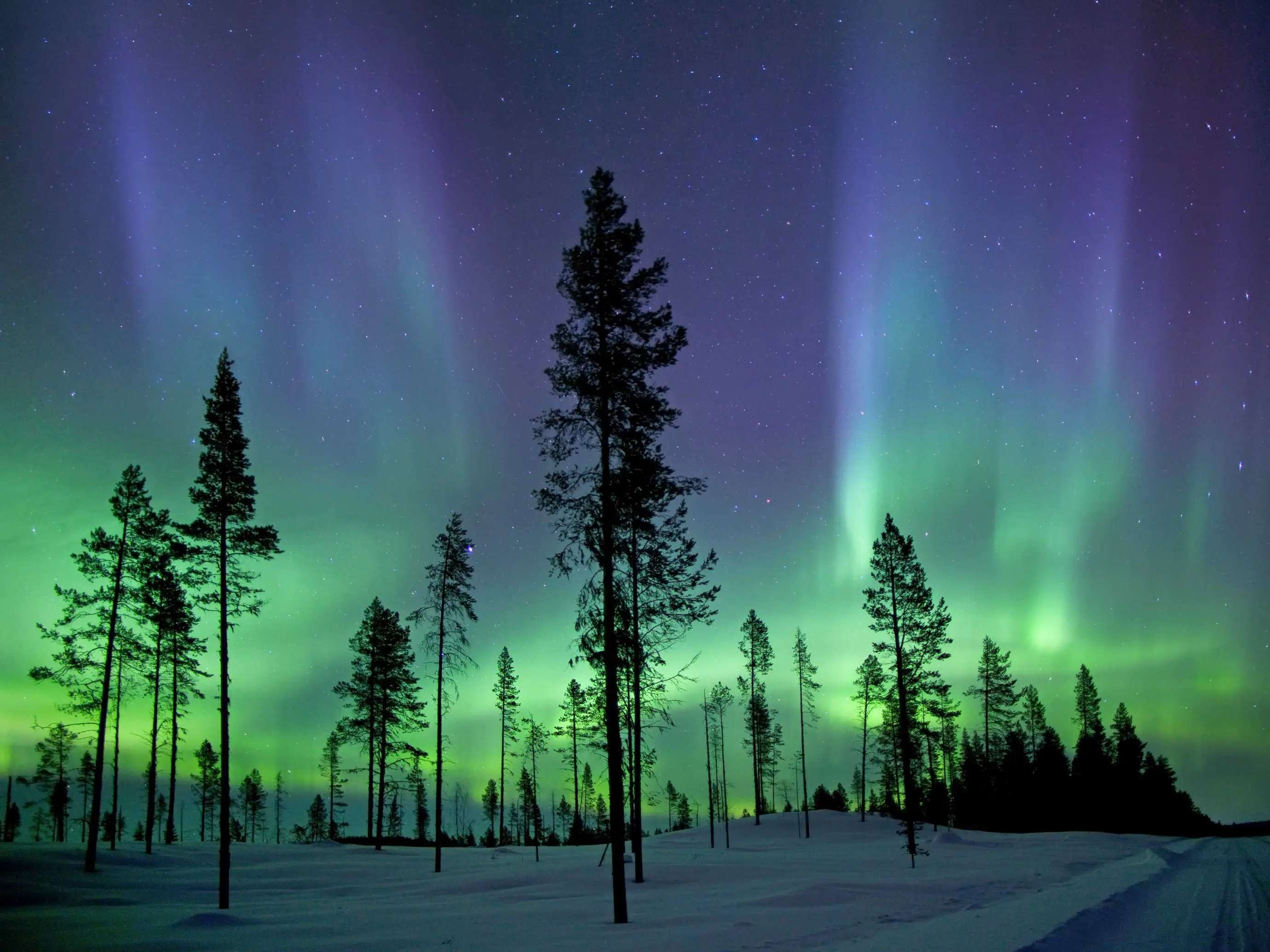 Stand in awe of the Aurora Borealis from Lapland, in northern Finland.