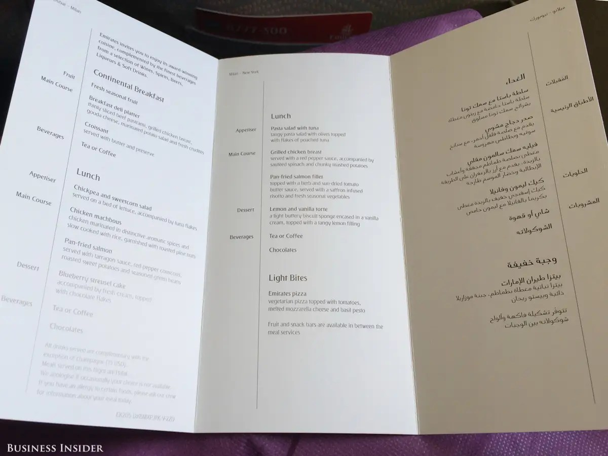 The menu was printed in both English and Arabic. Normally I would avoid seafood on an airplane, but I decided to try the pan-fried salmon. How bad could it be?
