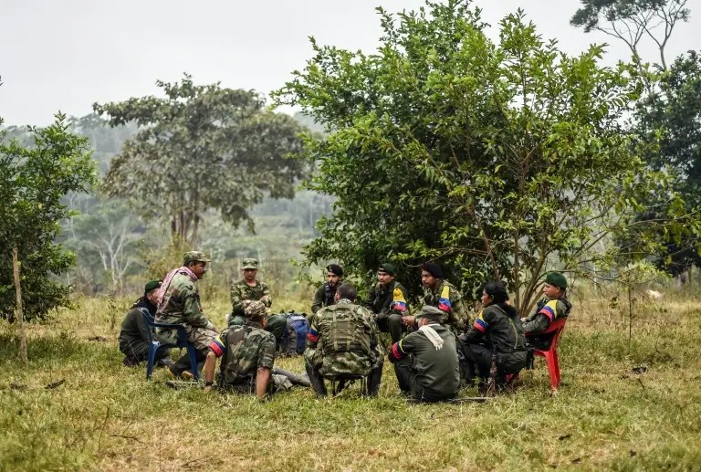 They still wear combat fatigues and carry rifles and machetes, but now FARC rebel troops sit down in the jungle to receive