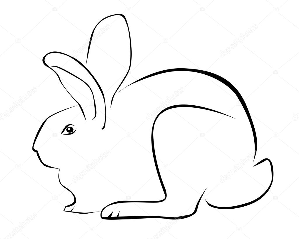 Tracing Of A Rabbit