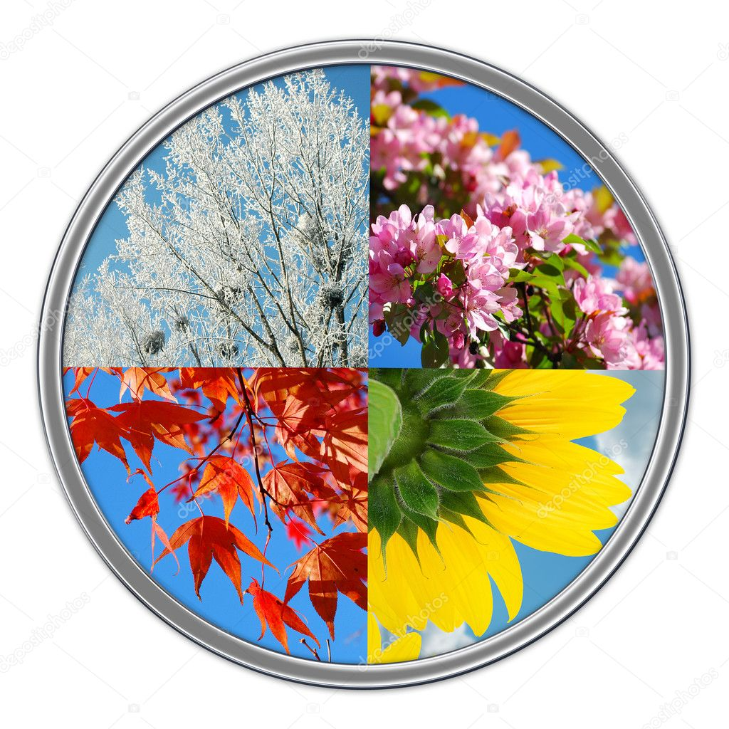 Four Seasons Of The Year Isolated On White