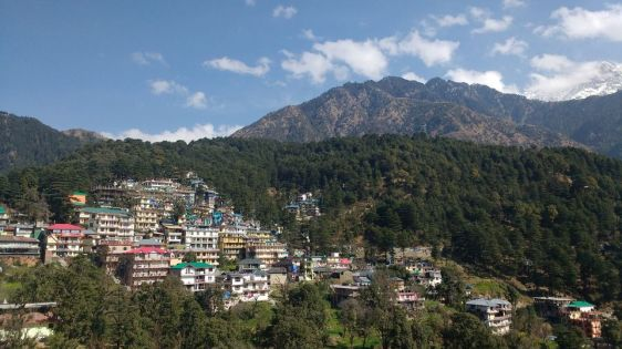 View of Dhauladhar mountains and mcleodganj from carpe diem's rooftop.