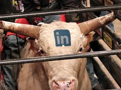 LinkedIn Bull