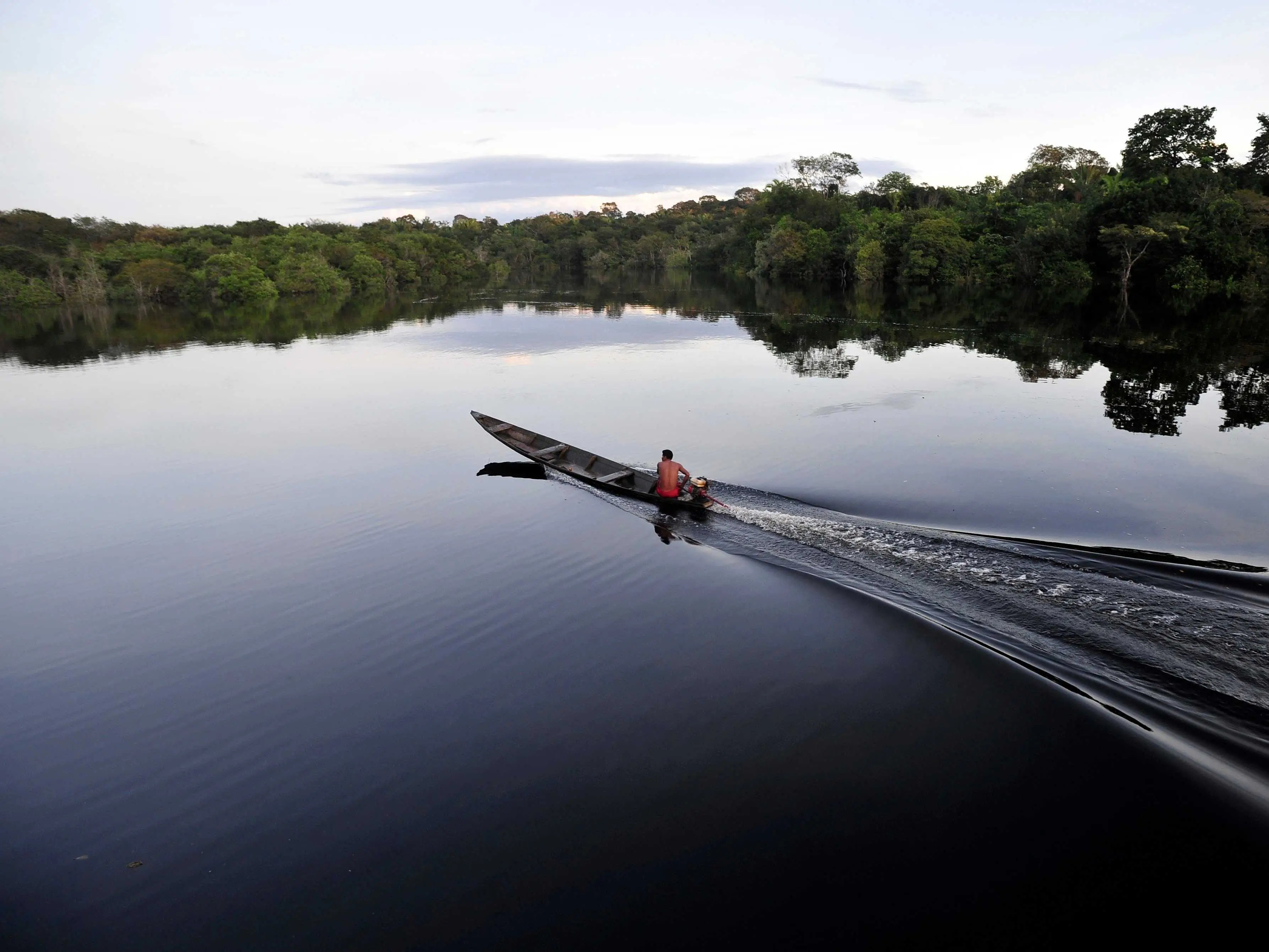 Boat across the Amazon River, the world's second-largest river and home to more than a third of the world's animal species.