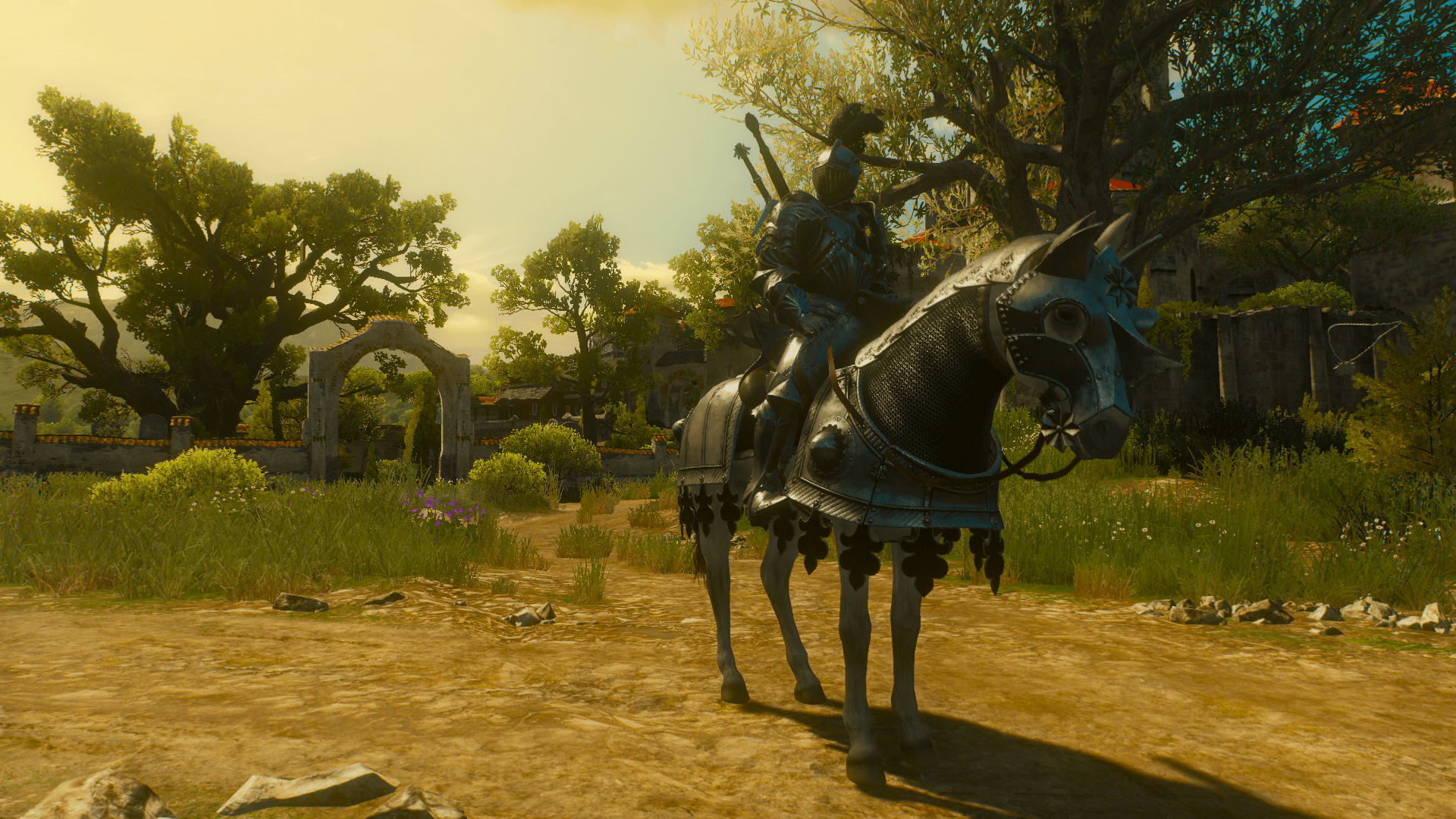 Knights Of Argent Dawn 3 At The Witcher 3 Nexus