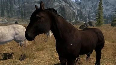 realistic horse mod skyrim se # 7