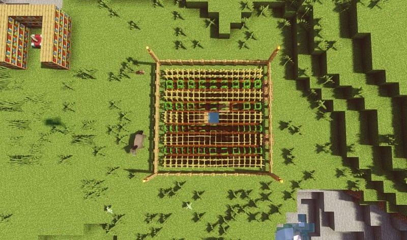 Shown: The efficient farm viewed from above (Image via Minecraft)