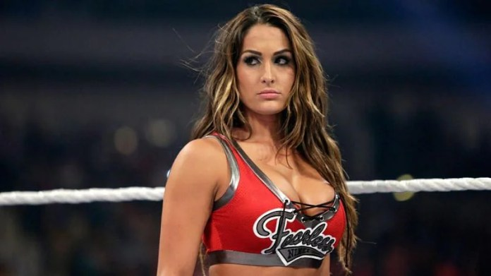 """Brie and Nikki Bella """"definitely"""" returning to WWE in-ring competition"""