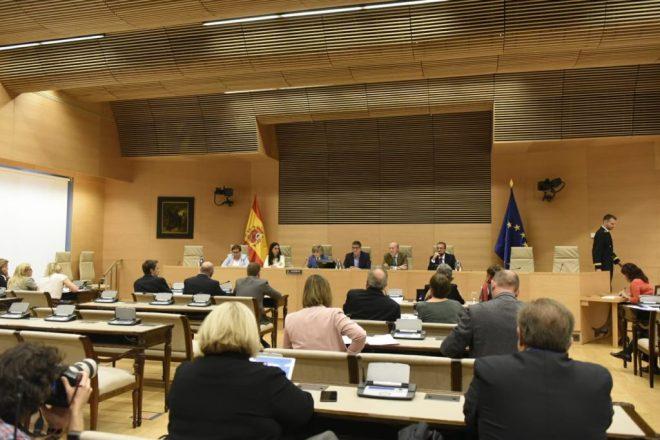 Comisión de Sanidad en el Congreso, con comparenecncia de la ministra de Sanidad, María Luisa Carcedo