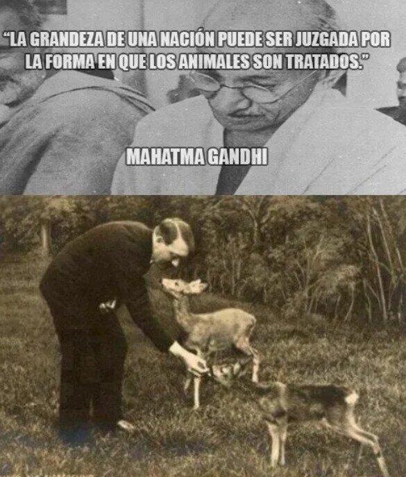Gandhi tampoco tenía la razón absoluta