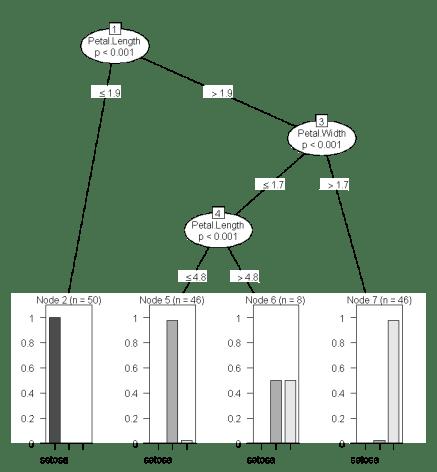 Species Decision Tree