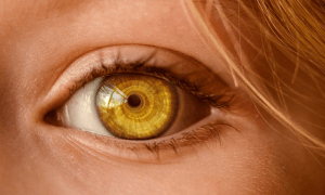Photograph of an eye to represent observational studies.