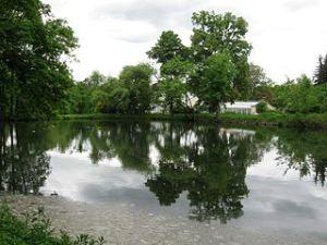 Teich am Chinesischen Pavillon im Schlosspark Pillnitz, Dresden