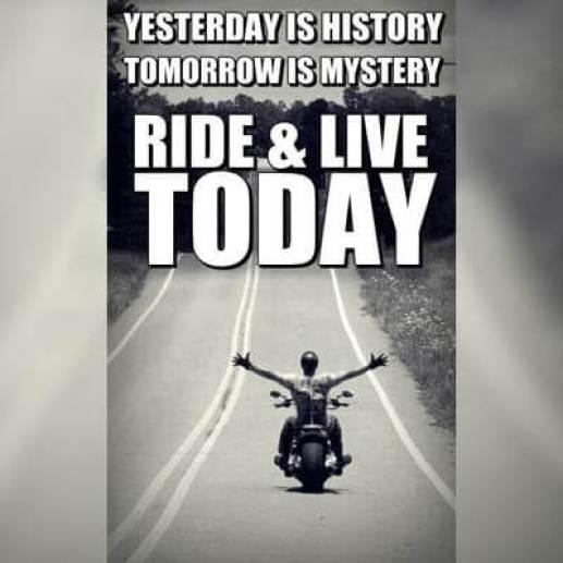 Bike Rider Short Status
