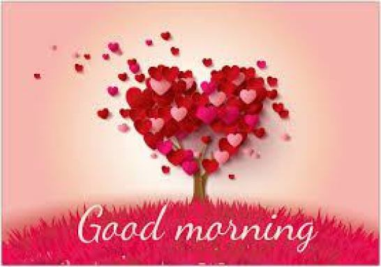 Good Morning Love Images Dp