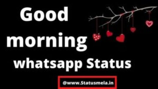 about us page for statusmela