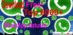 Status para WhatsApp - imagens 1 frases