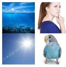4 immagini 1 parola soluzioni ans BLU