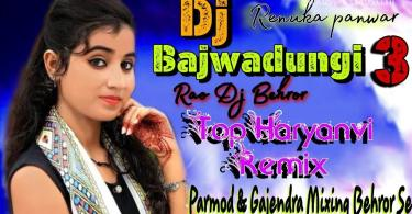 DJ Bajwadungi 3 Song Renuka Panwar Download