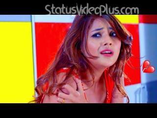 Latest Love Status Videos Download