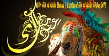 100+ Eid ul Adha Status Excellent Eid ul Adha Wishes 2016