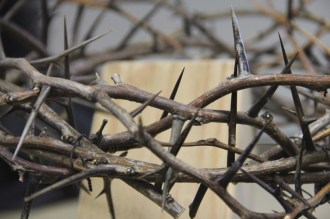 Holy Week: Crown of Thorns