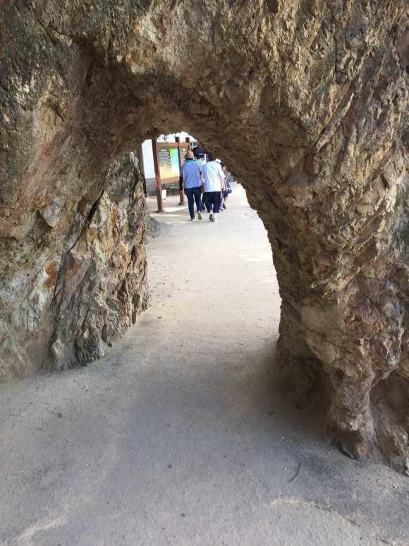 仙酔島の自然のトンネル