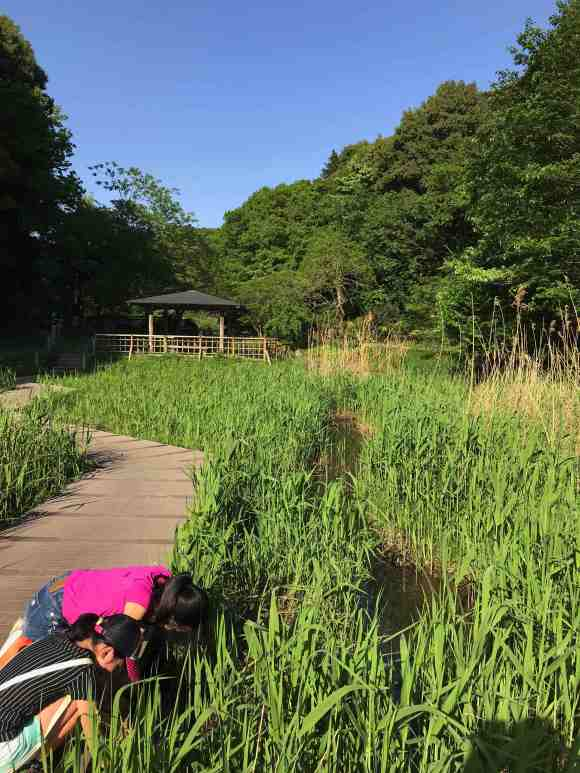 谷戸山 釣り1