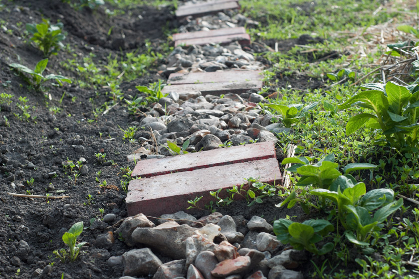Path made from stones and bricks