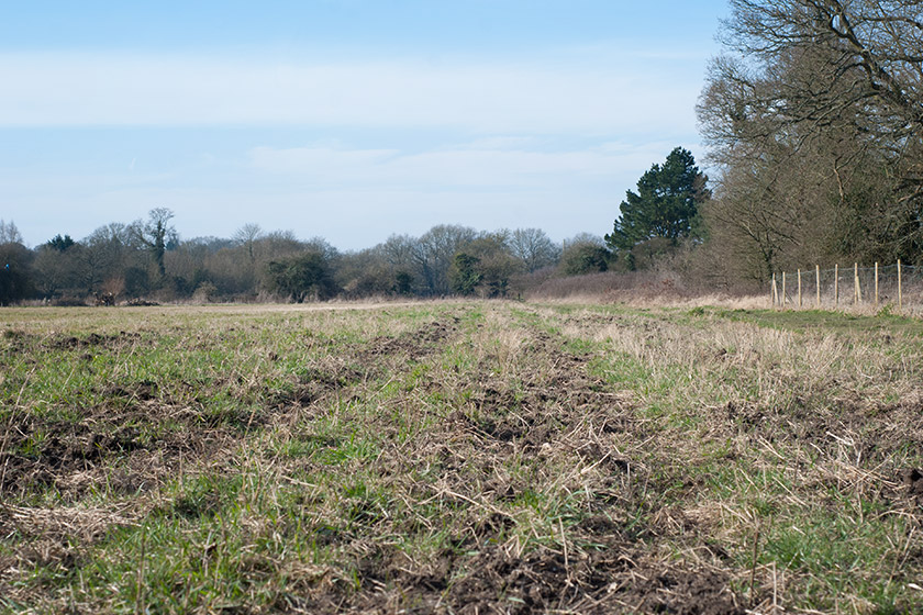 View of Bishop's Meadow