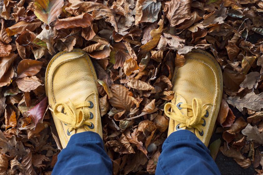 Standing on leaf pile