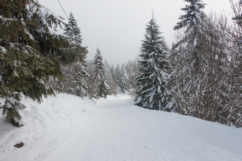 Snow covered hiking track