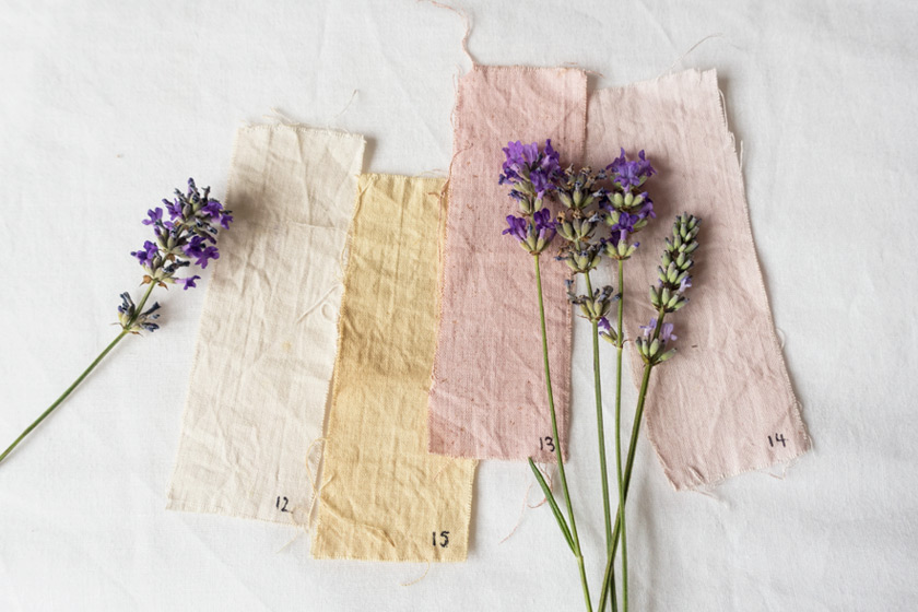 Neutral fabric swatches