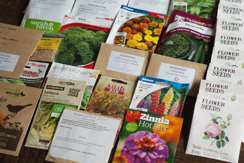 Seed packets on table