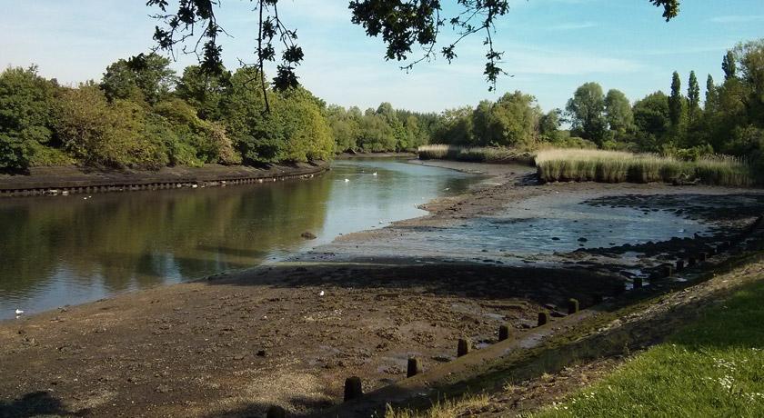 River views in Bitterne Park