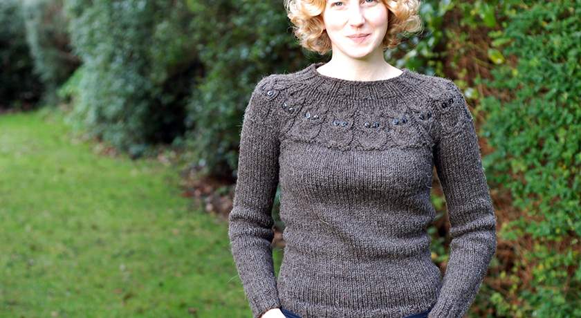 Front view of brown owl jumper