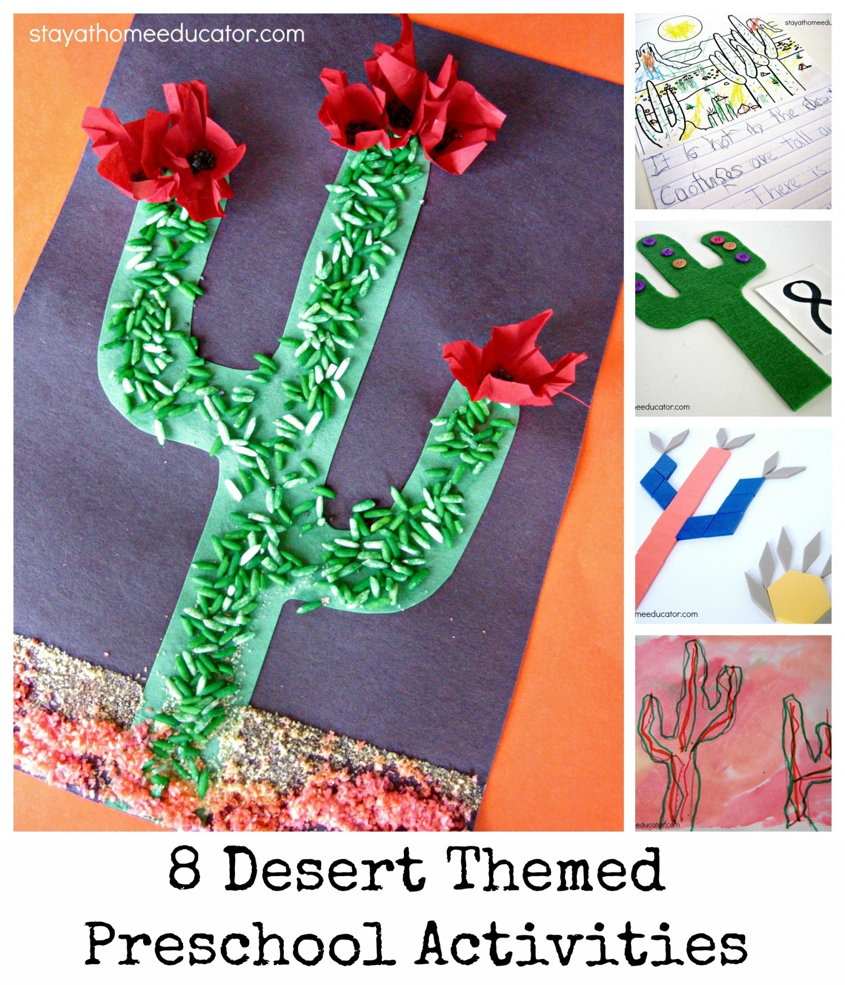Eight Desert Theme Preschool Activities