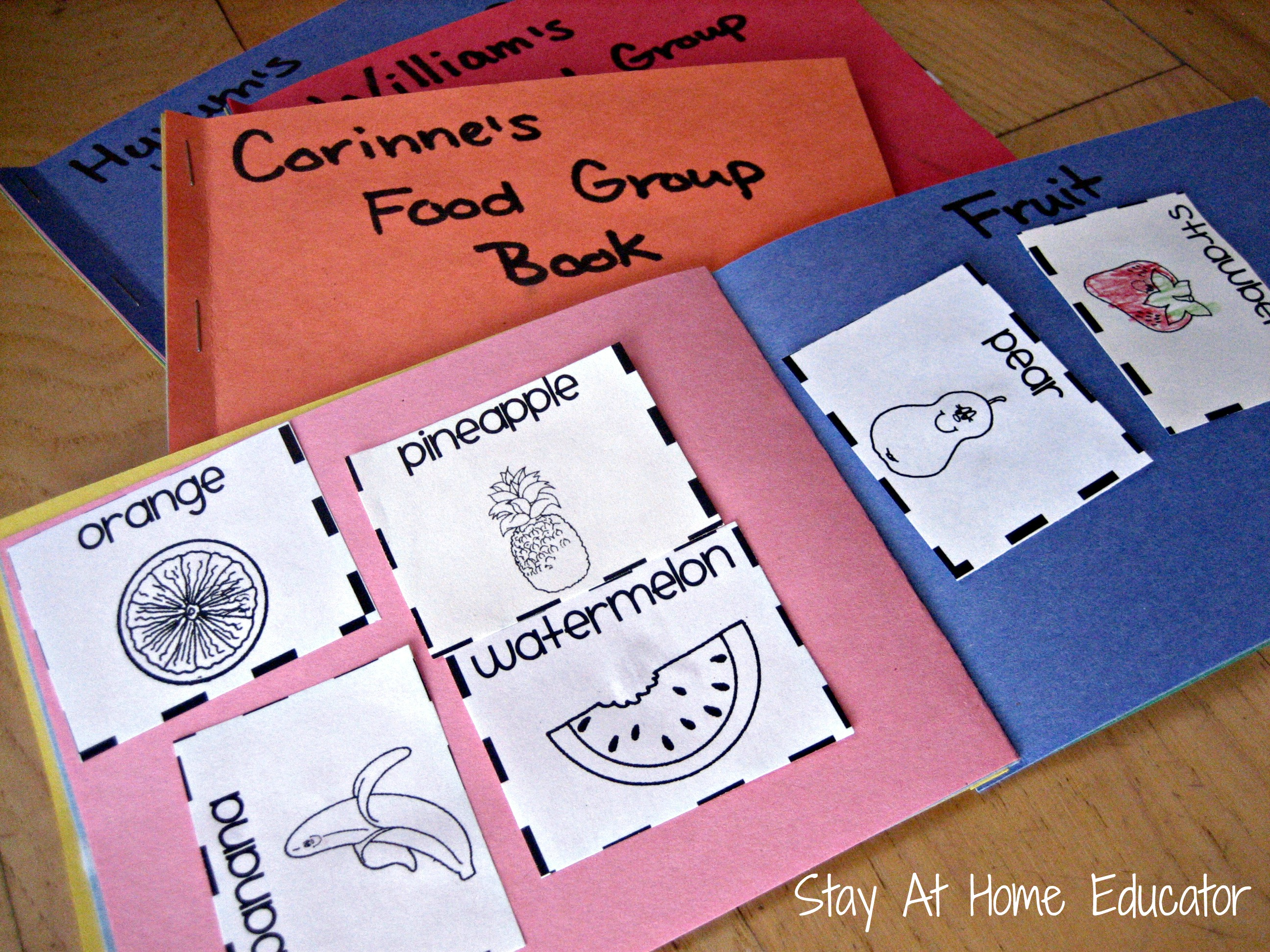 Food Group Sorting Book