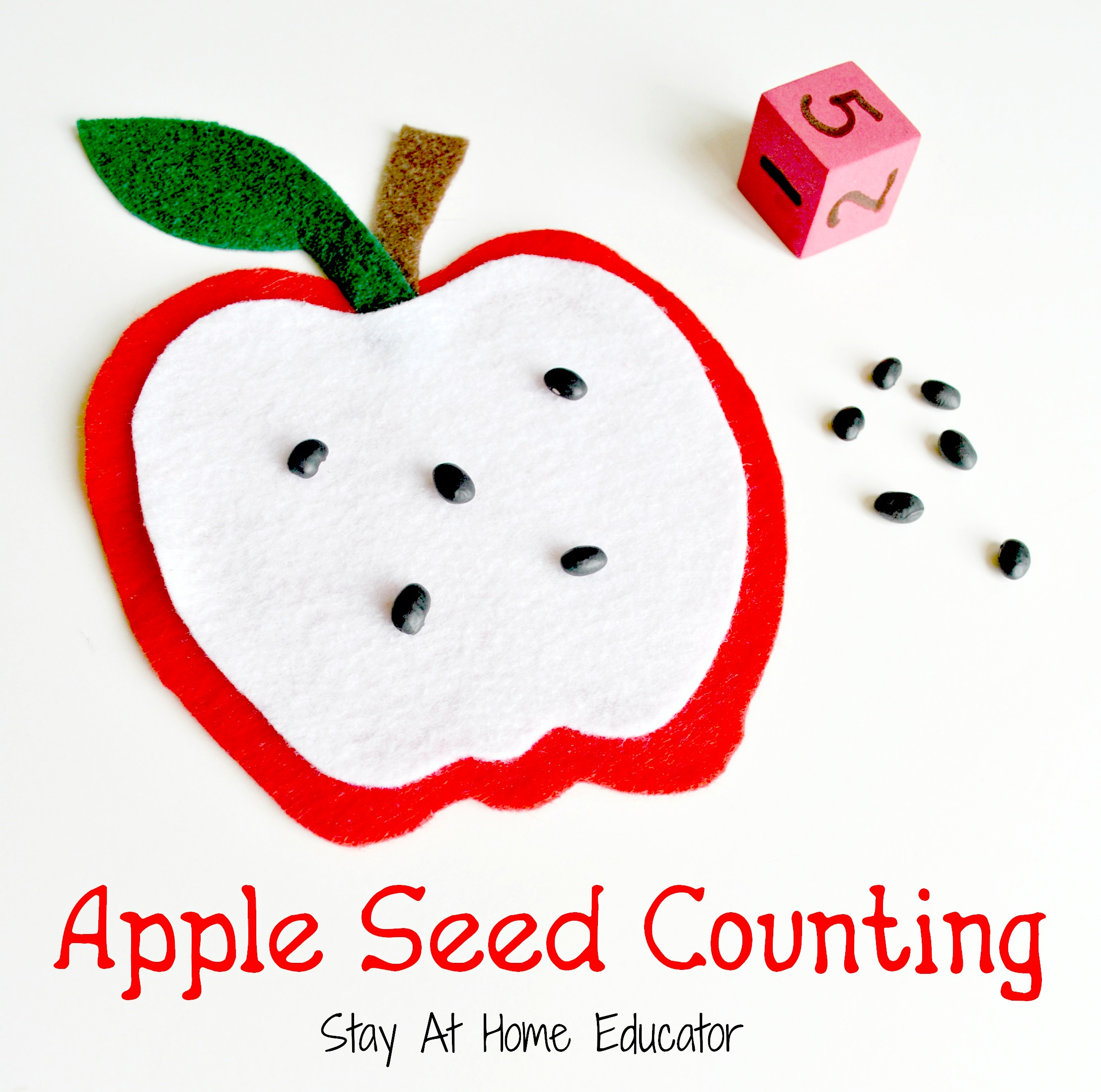 Apple Drop Counting