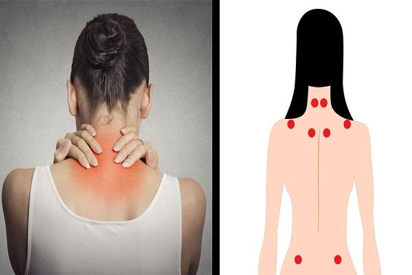Fibromyalgie, douleur et handicap.