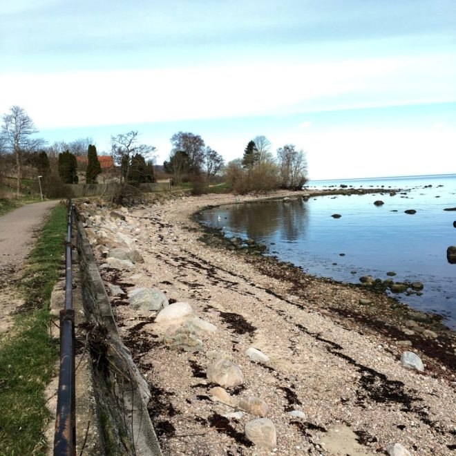 Staycation: Morgon promenad mellan Båstad och Hovs Hallar