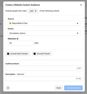Website Custom Audience Settings