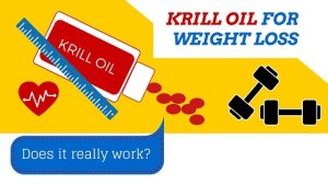 krill oil for weight loss