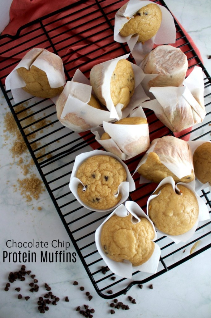 High protein, low fat chocolate chip protein muffins. Great macros! 8p/19c/2f each! #stayfitmom #breakfastrecipe #proteinrecipe #macrofriendly