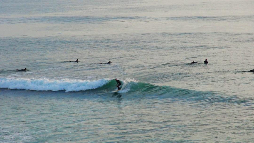 Beaches & Surf Report |