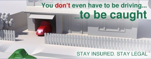 Stay Insured website - Stay Legal