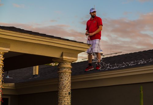 Don't be a goof...Stay off the Roof!