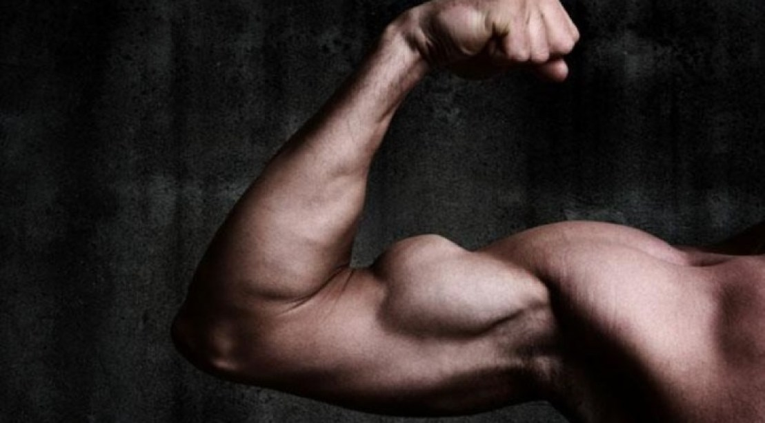 Top 5 Gym Exercise For Biceps – To Build Bigger Biceps
