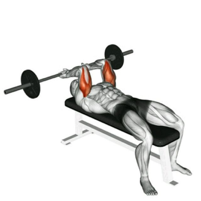 lying triceps extension exercise