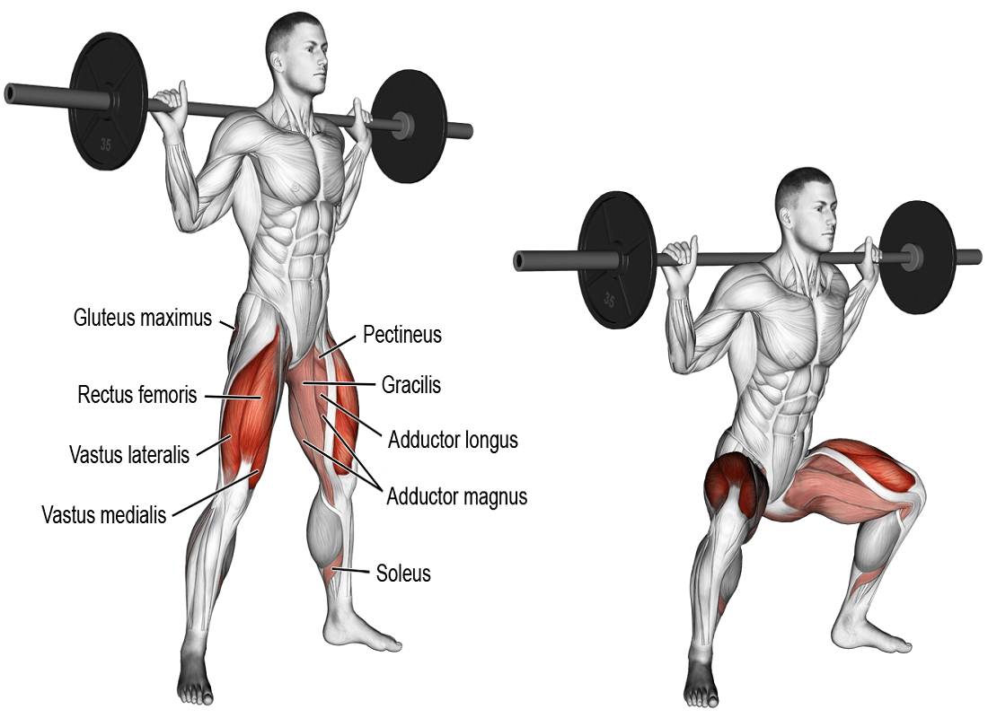 Sumo Squat Exercises For Inner Thighs